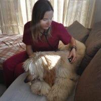 animal-salut-veterinario-domicilio-mireia-badia-enzo -6